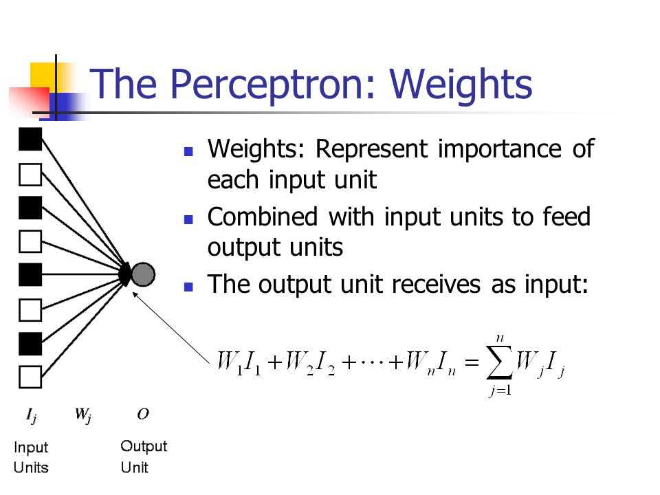 The Perceptron: Weights