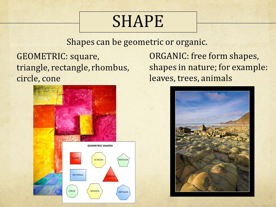 Shapes can be geometric or organic.