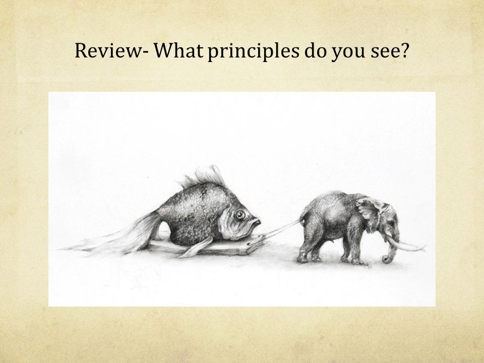 Review- What principles do you see