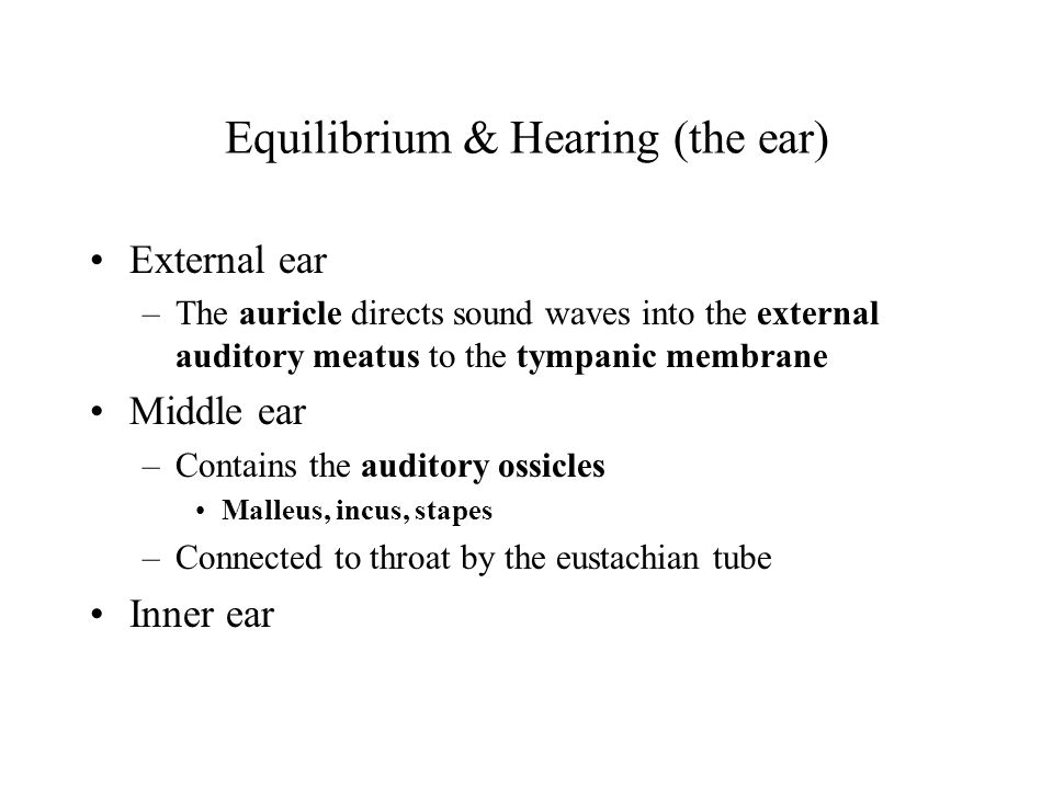 Equilibrium & Hearing (the ear)