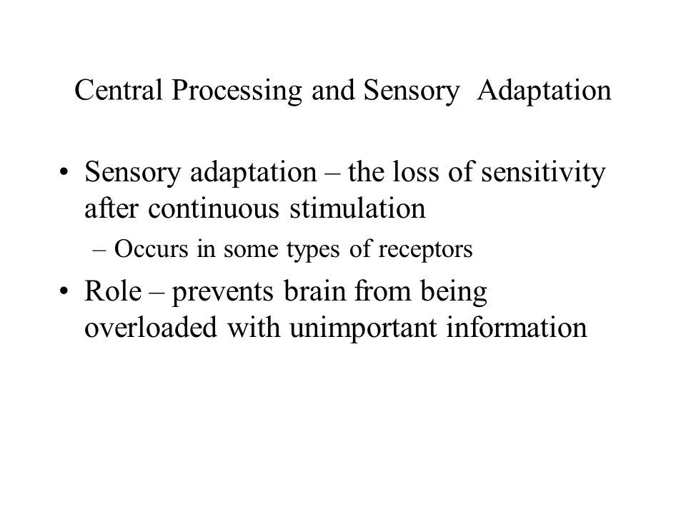 Central Processing and Sensory Adaptation