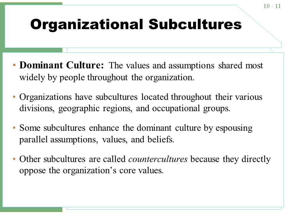 subculture definition and examples
