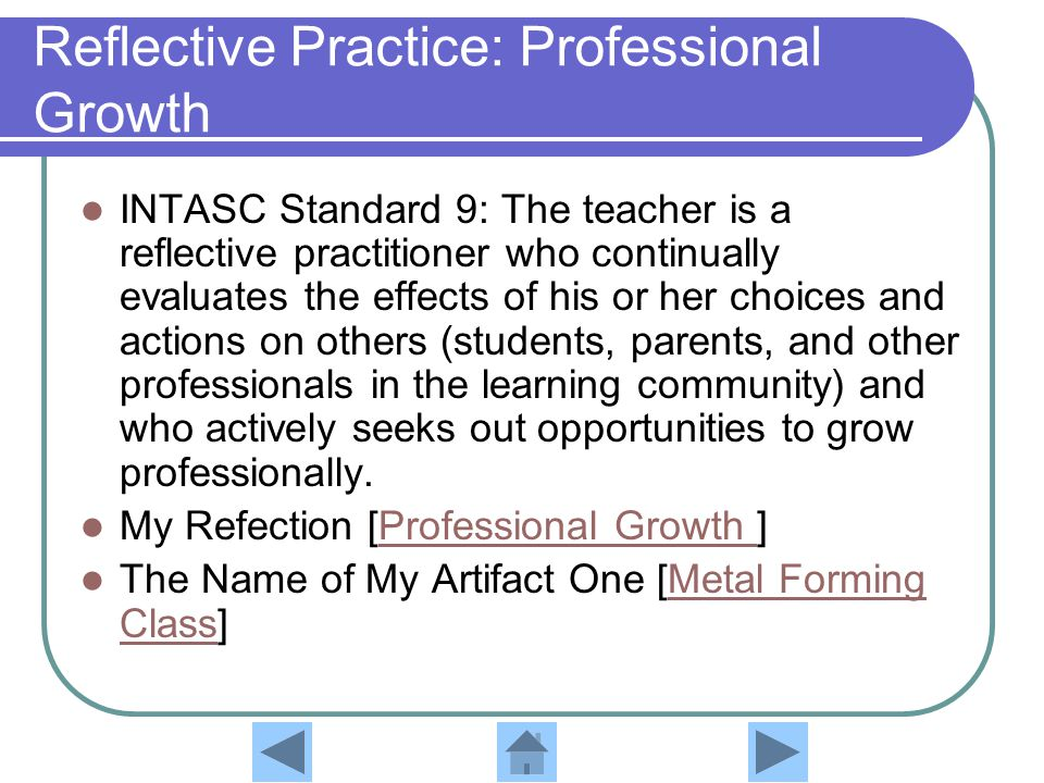 Reflective Practice: Professional Growth
