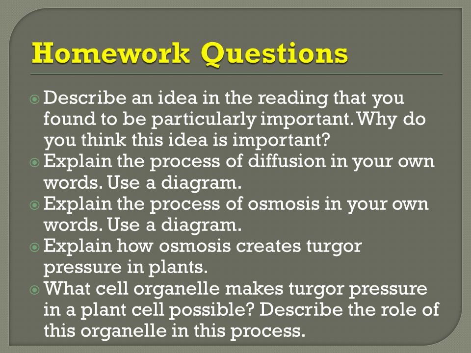 Homework Questions Describe an idea in the reading that you found to be particularly important. Why do you think this idea is important