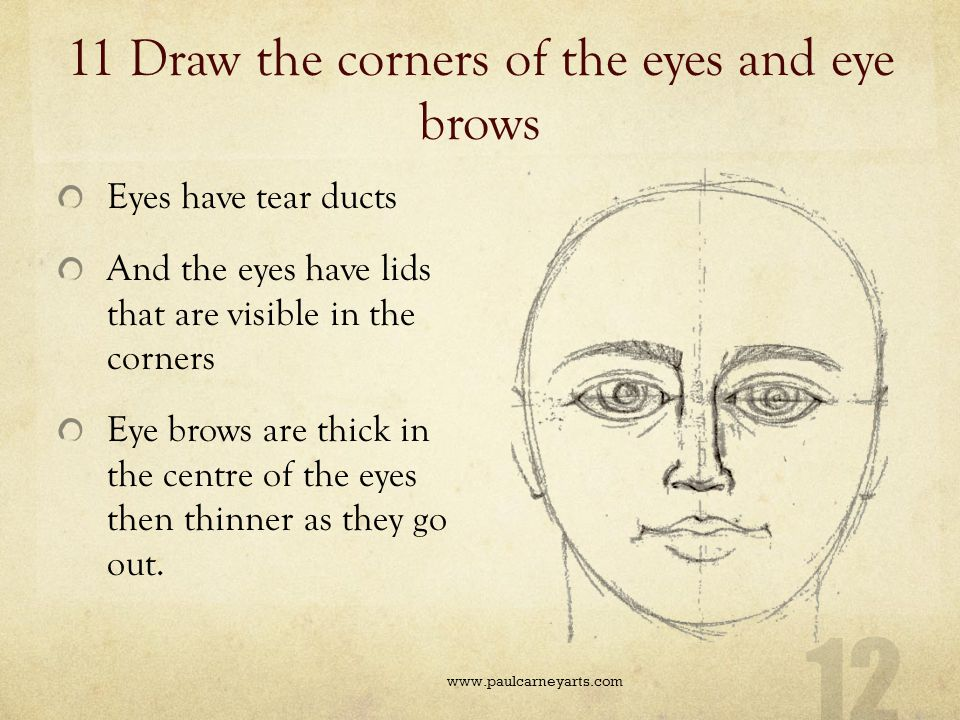 11 Draw the corners of the eyes and eye brows