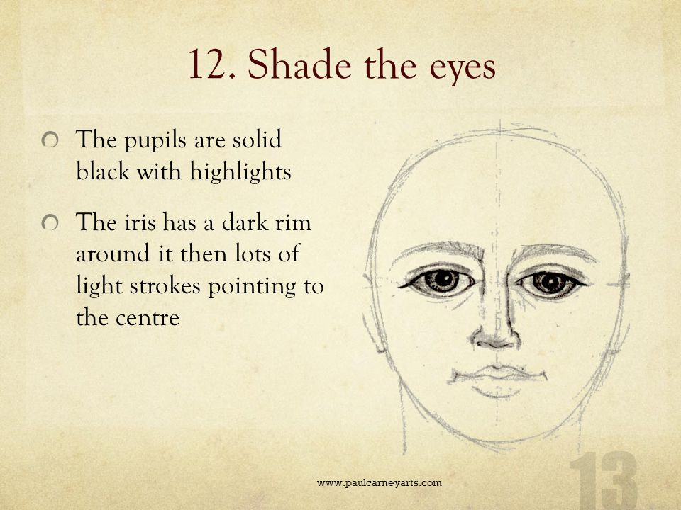 12. Shade the eyes The pupils are solid black with highlights
