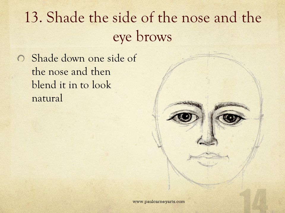 13. Shade the side of the nose and the eye brows