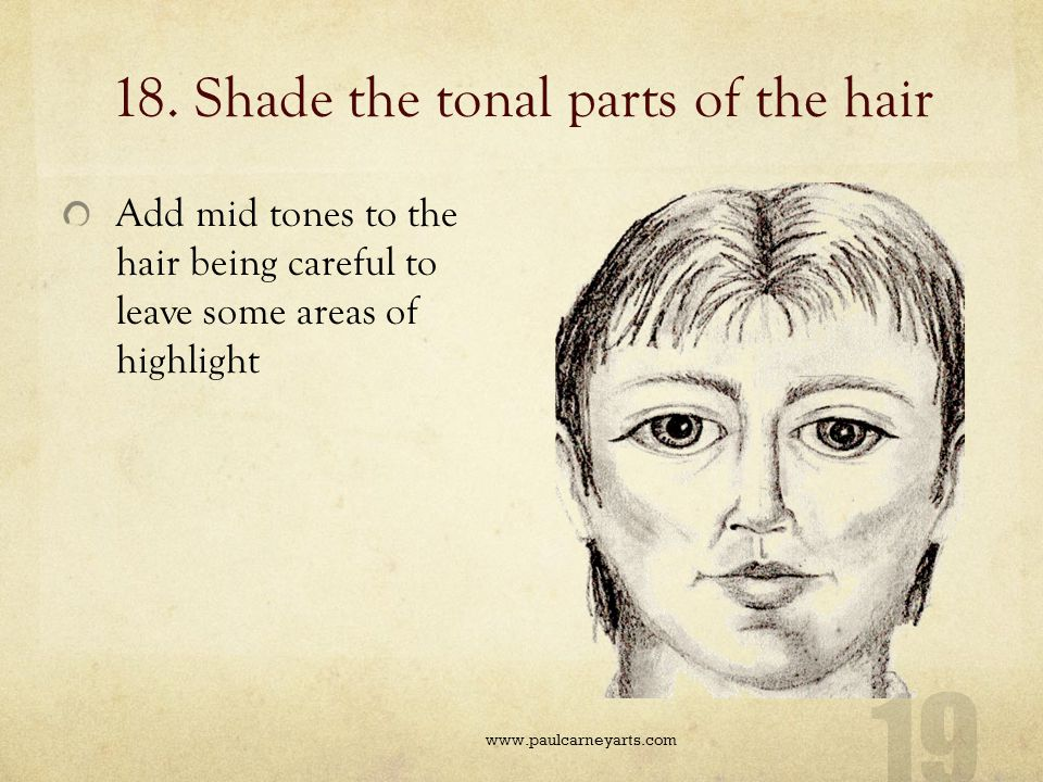 18. Shade the tonal parts of the hair