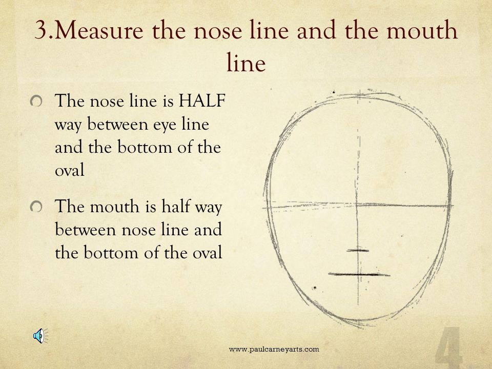 3.Measure the nose line and the mouth line