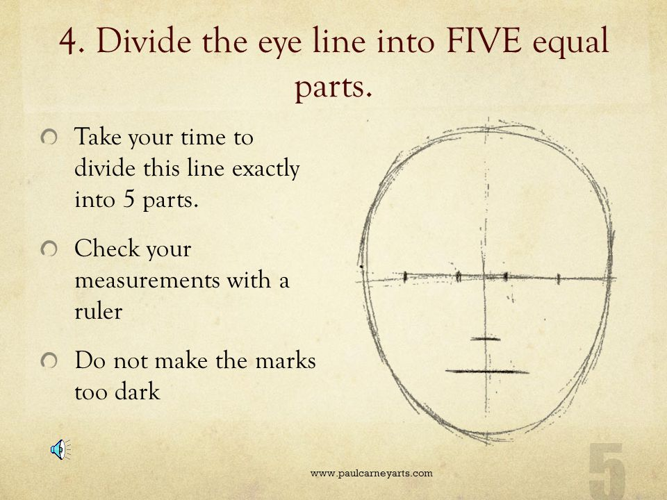 4. Divide the eye line into FIVE equal parts.