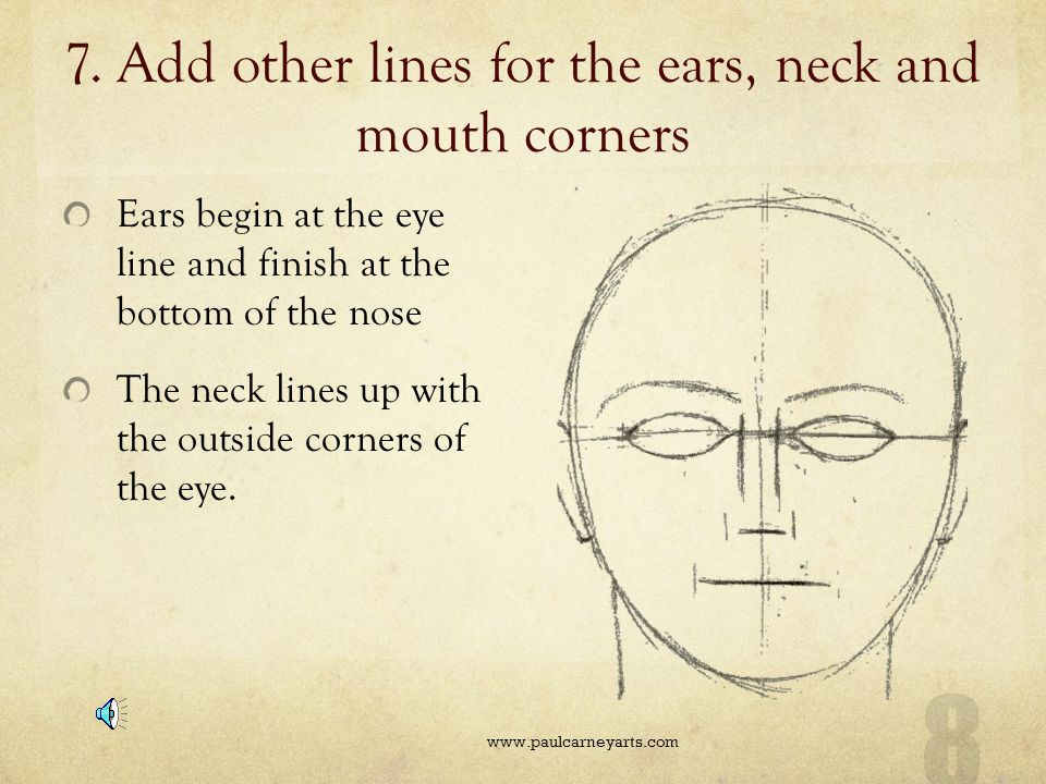 7. Add other lines for the ears, neck and mouth corners