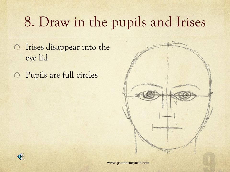 8. Draw in the pupils and Irises
