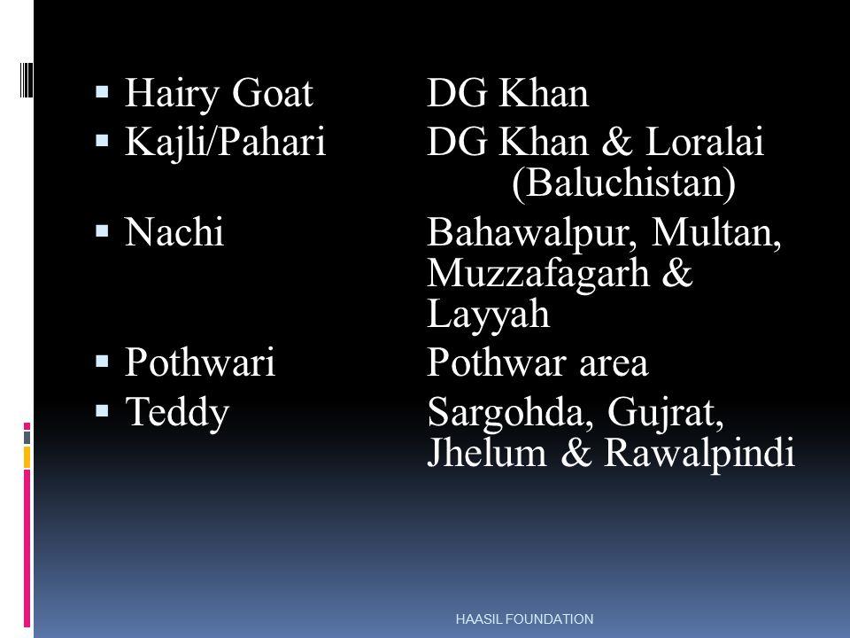 GOAT BREEDS OF PAKISTAN - ppt video online download