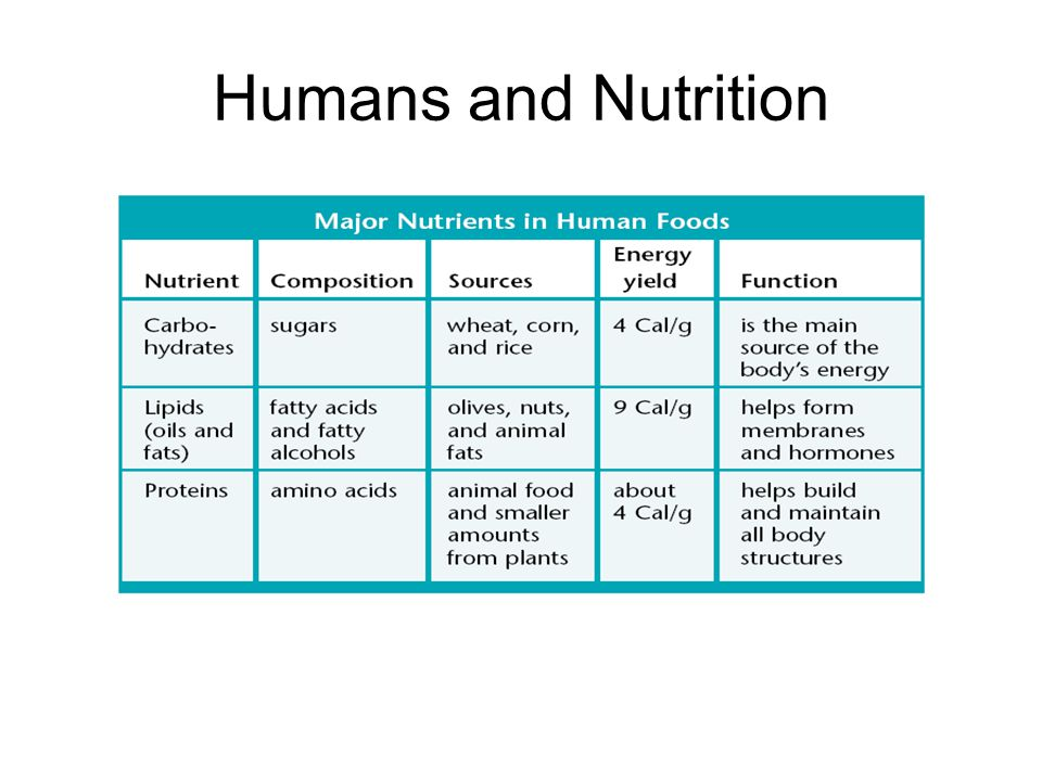 Humans and Nutrition