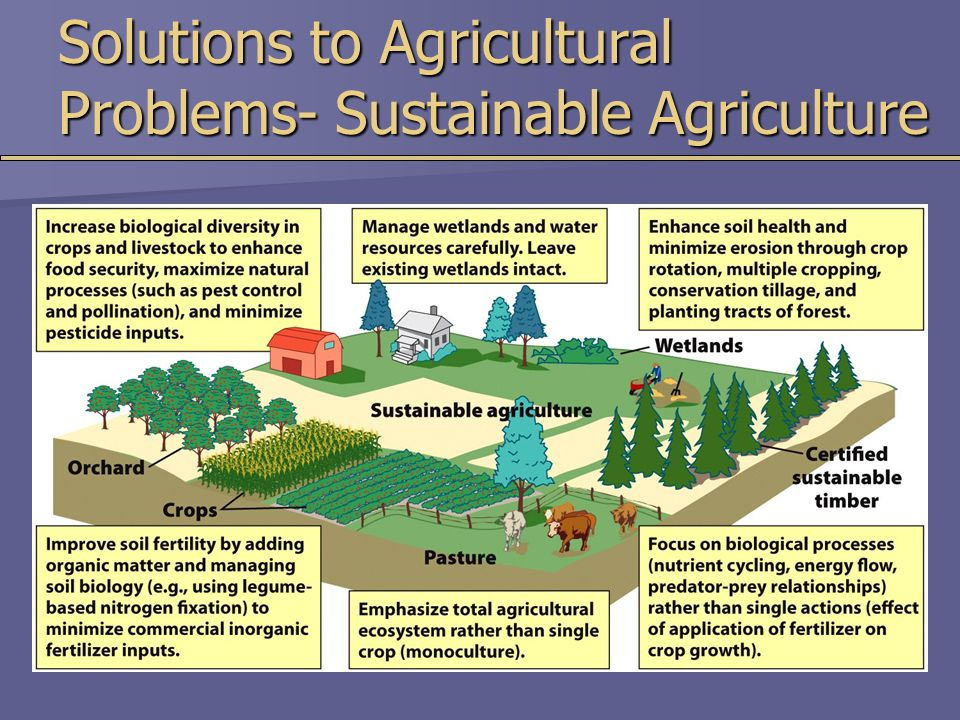 Solutions to Agricultural Problems- Sustainable Agriculture