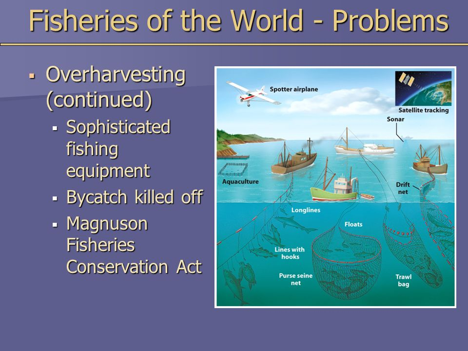 Fisheries of the World - Problems
