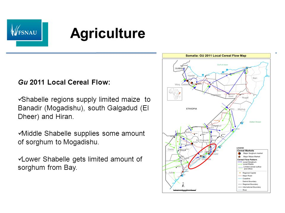 Food Security and Nutrition Analysis Unit Somalia - ppt video online