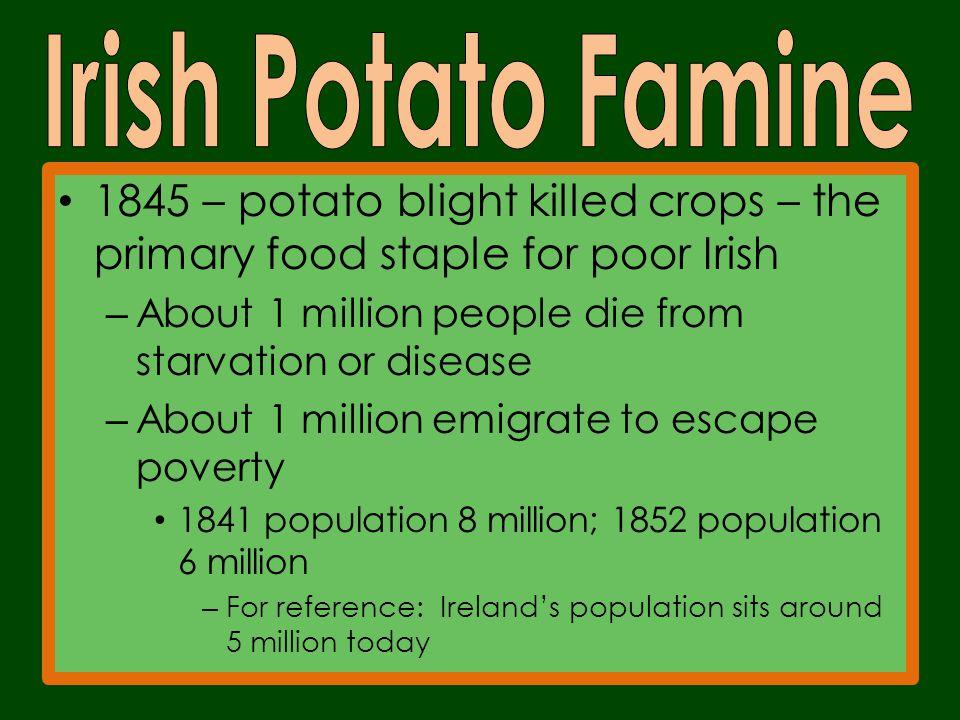 History Of Ireland Northern Ppt Video Online Download 24 Irish Potato Famine Worksheet: Irish Famine Worksheets At Alzheimers-prions.com