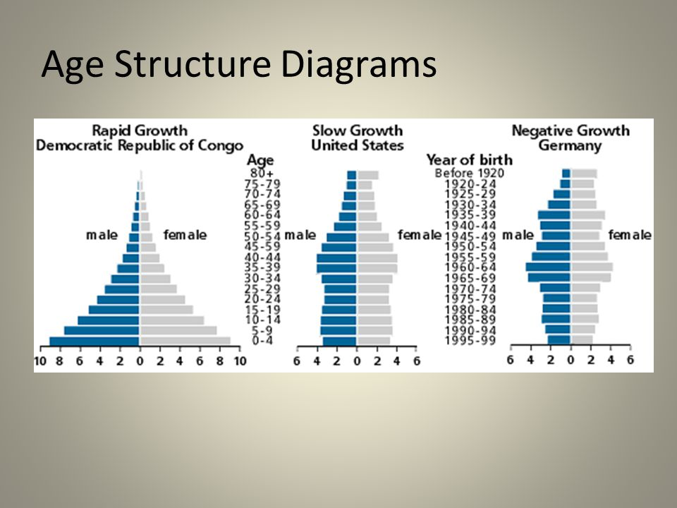 Chapter 5 Populations Ppt Video Online Download