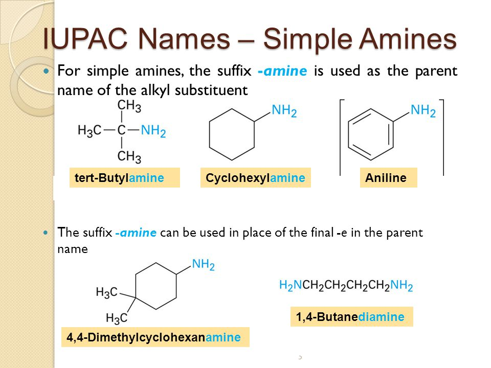 Chapter 24  Amines and Heterocycles - ppt video online download