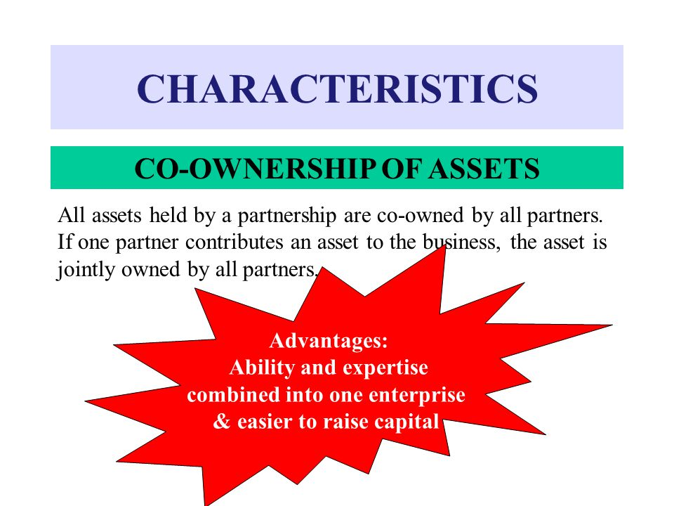 CO-OWNERSHIP OF ASSETS combined into one enterprise