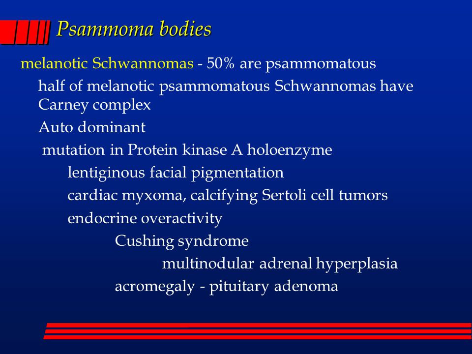 Some Bodies In The Brain Noon Diagnostic Conference Ppt Video