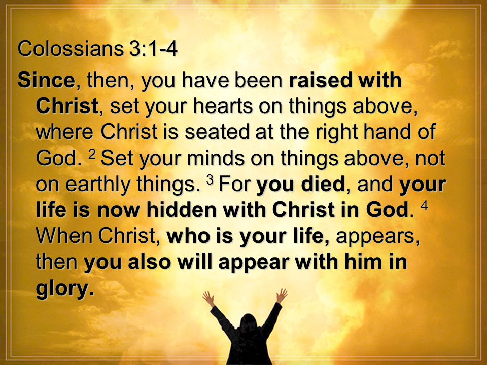 colossians 3 since then you have been raised with christ set
