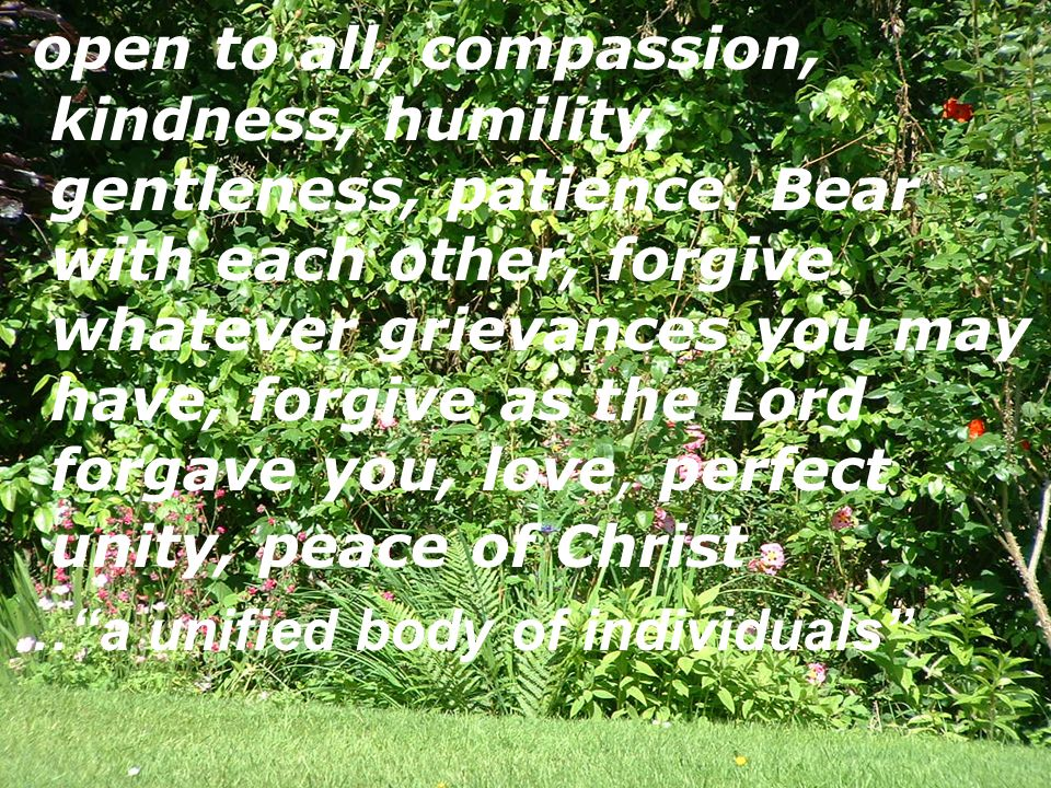 open to all, compassion, kindness, humility, gentleness, patience