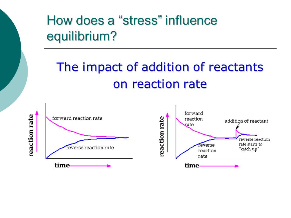 How does a stress influence equilibrium