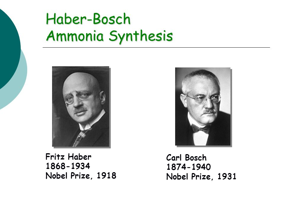 Haber-Bosch Ammonia Synthesis