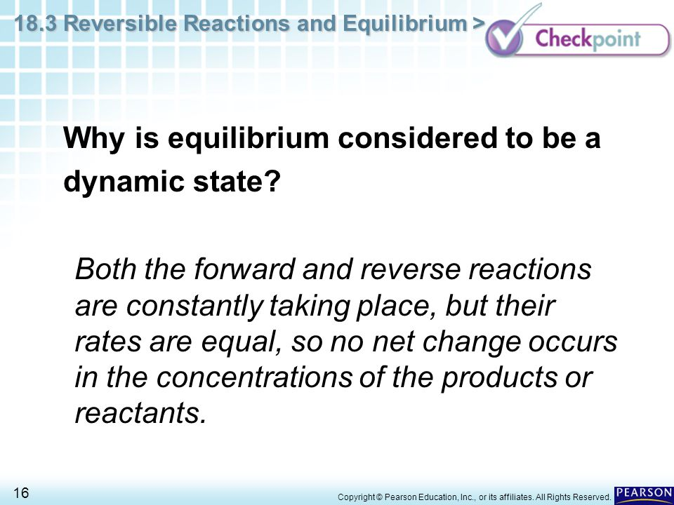 Why is equilibrium considered to be a dynamic state
