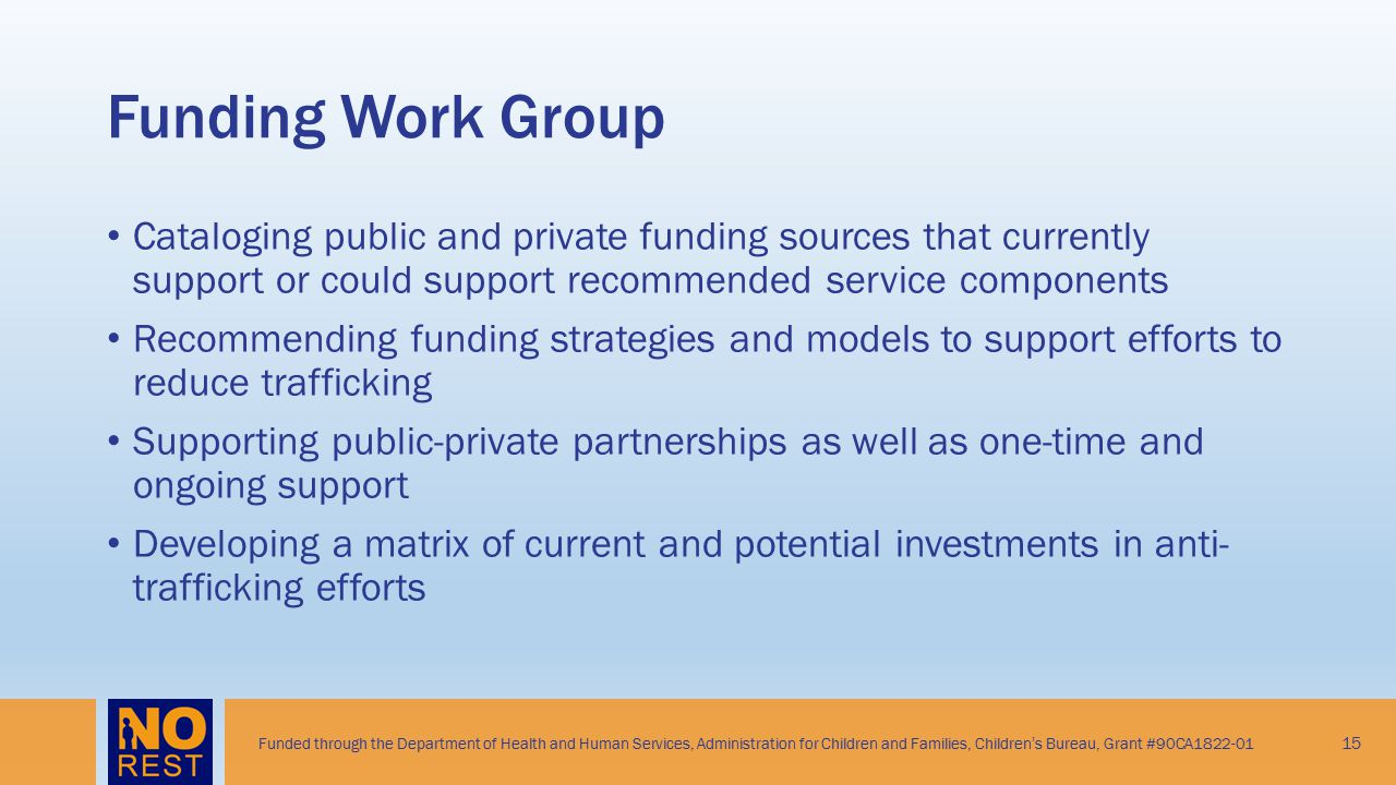 Funding Work Group Cataloging public and private funding sources that currently support or could support recommended service components.
