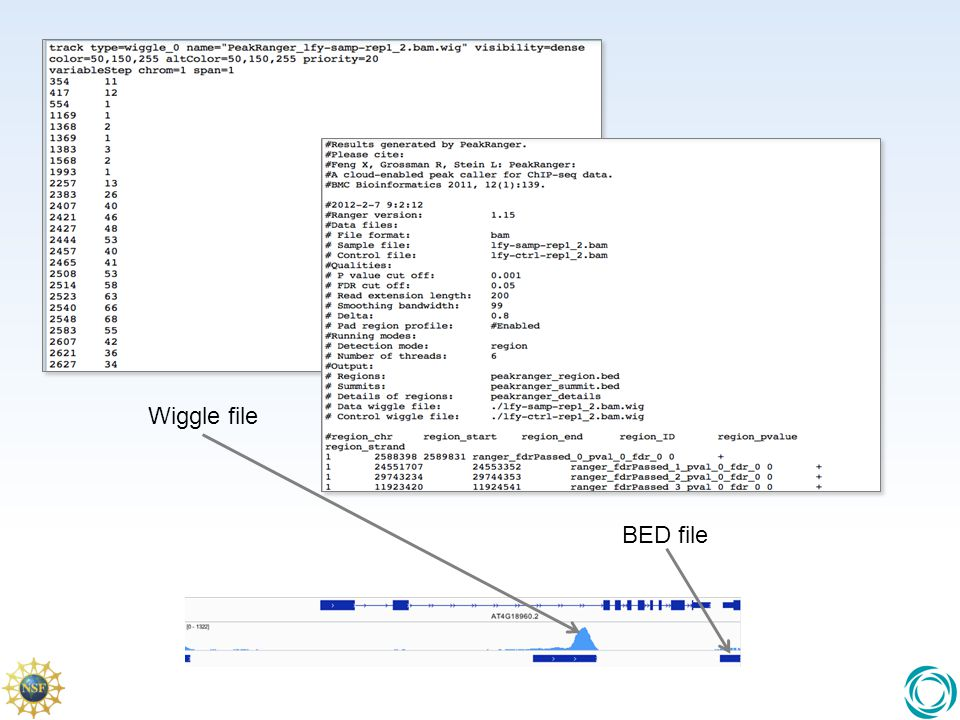 Wiggle file Wiggle files represent value over spatial resolution and are generally continuous.