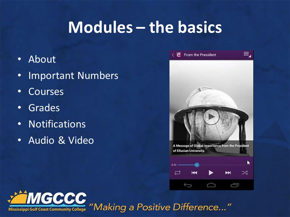 Modules – the basics About Important Numbers Courses Grades