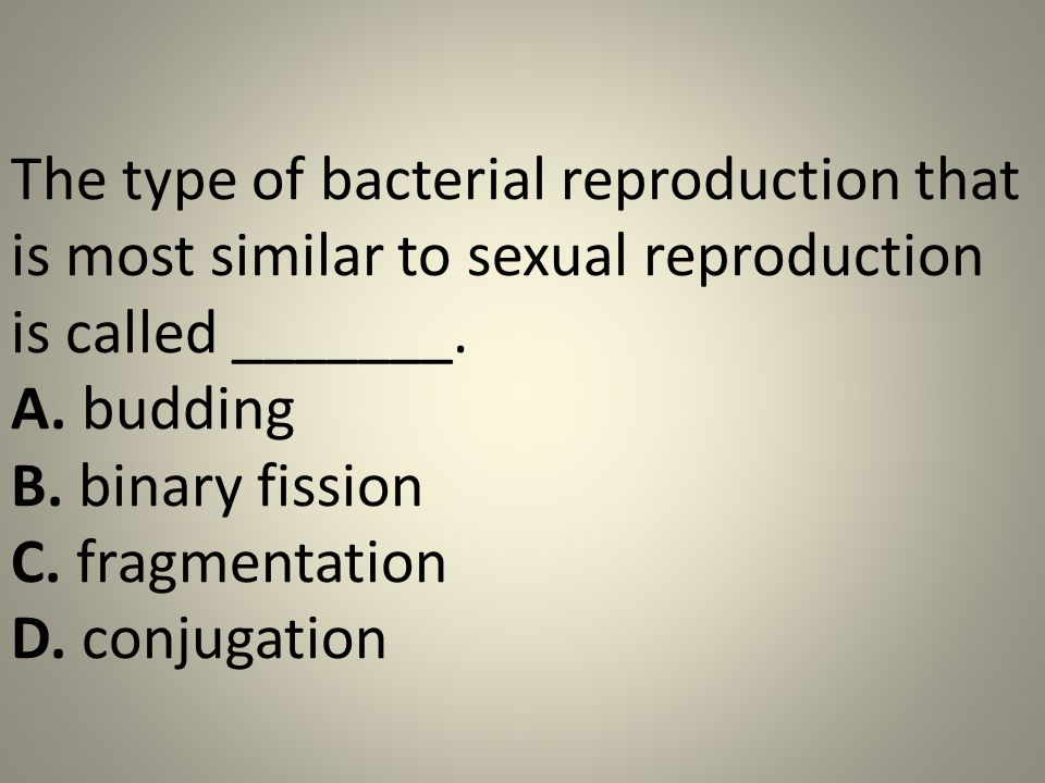 Test asexual reproduction in bacteria