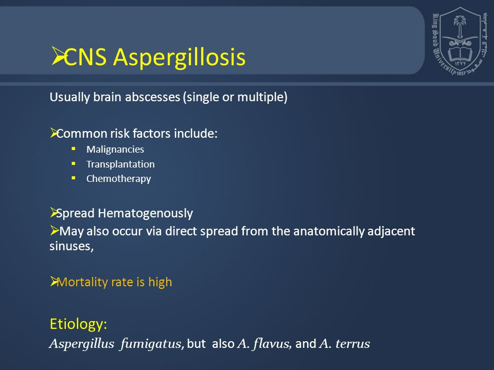 CNS Aspergillosis Usually brain abscesses (single or multiple)