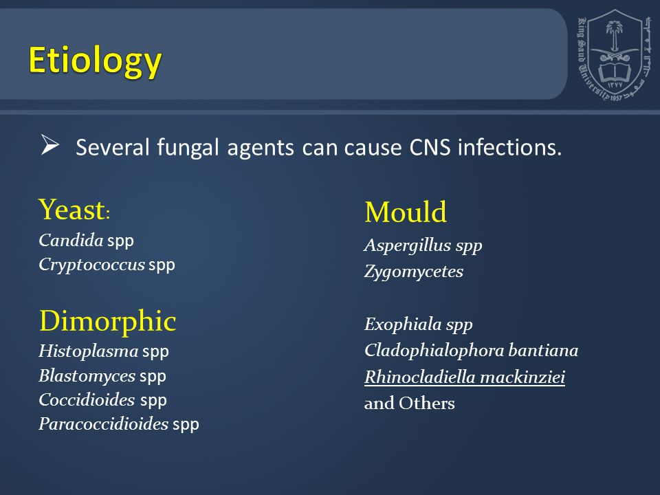 Etiology Several fungal agents can cause CNS infections. Yeast: Mould