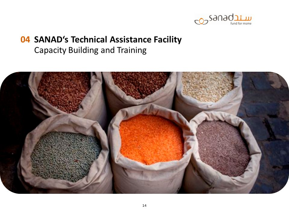 SANAD's Technical Assistance Facility Capacity Building and Training