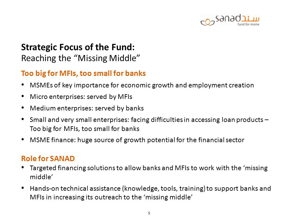 Strategic Focus of the Fund: Reaching the Missing Middle