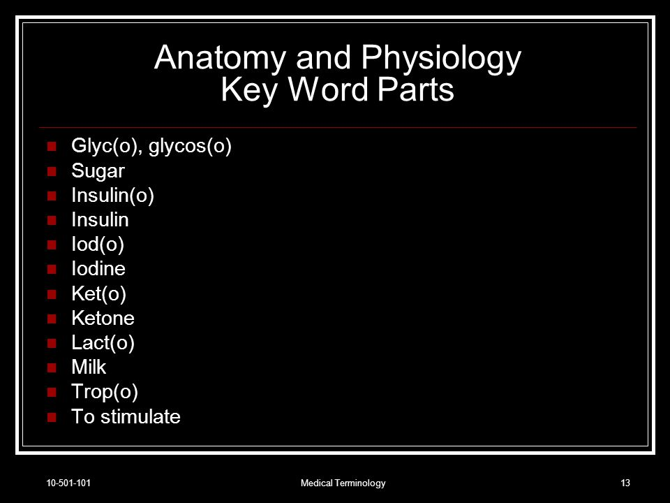NWTC Medical Terminology Chapter ppt download
