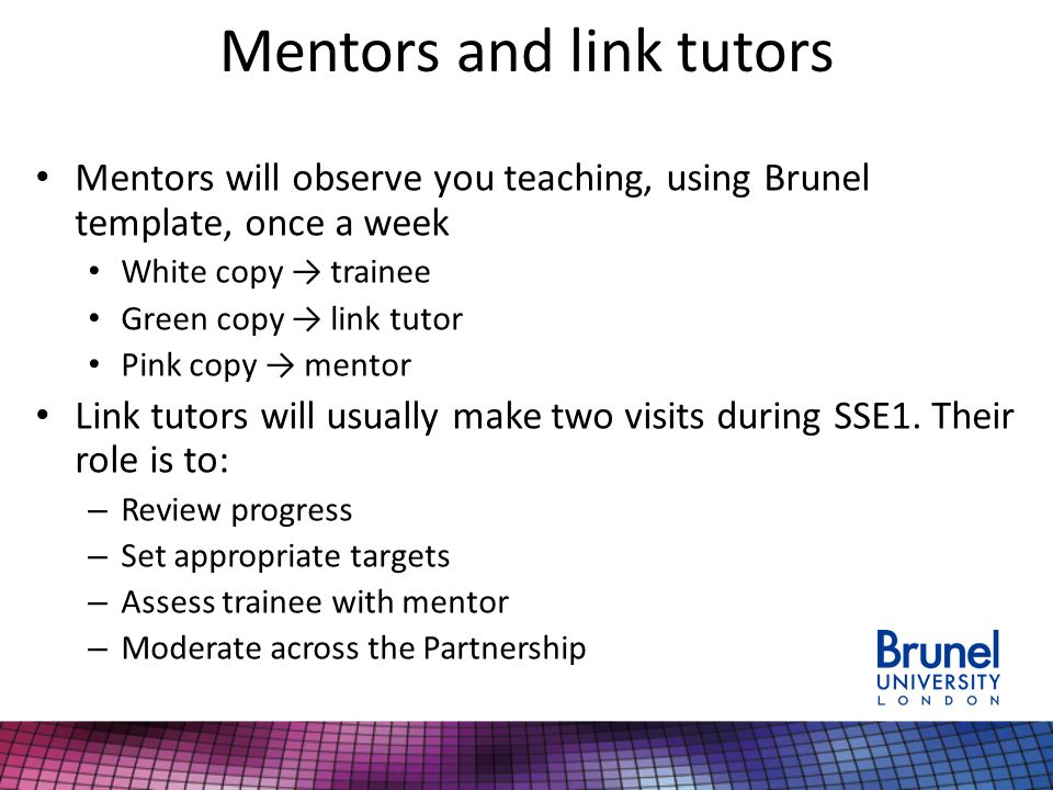 Mentors and link tutors