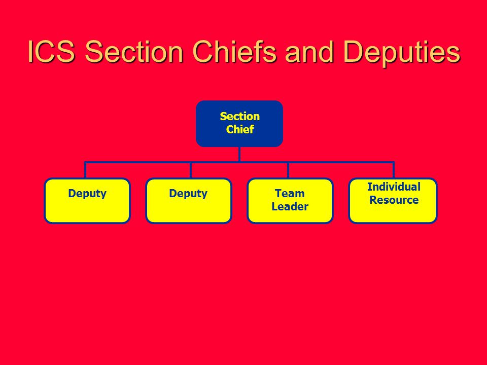 ICS Section Chiefs and Deputies