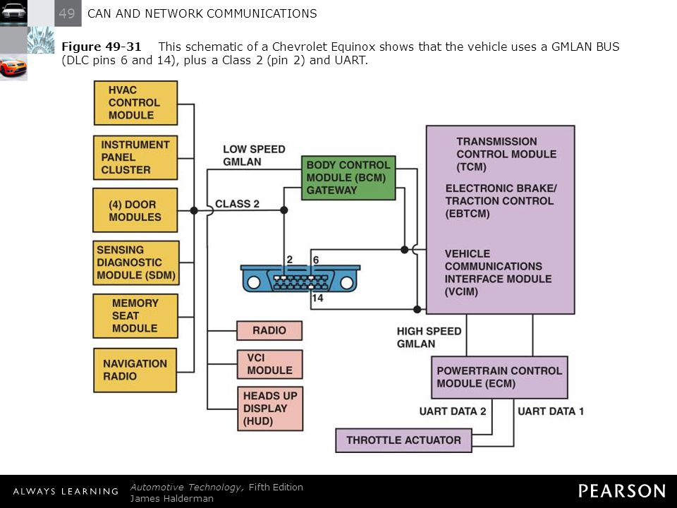 CAN AND NETWORK COMMUNICATIONS - ppt video online download