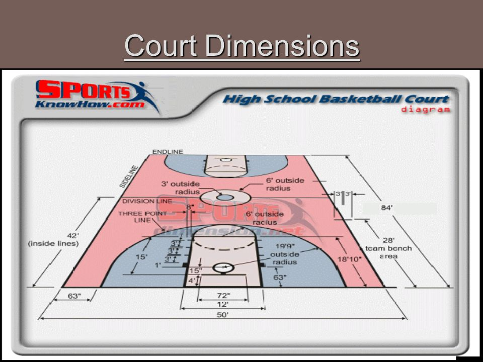 Court Dimensions