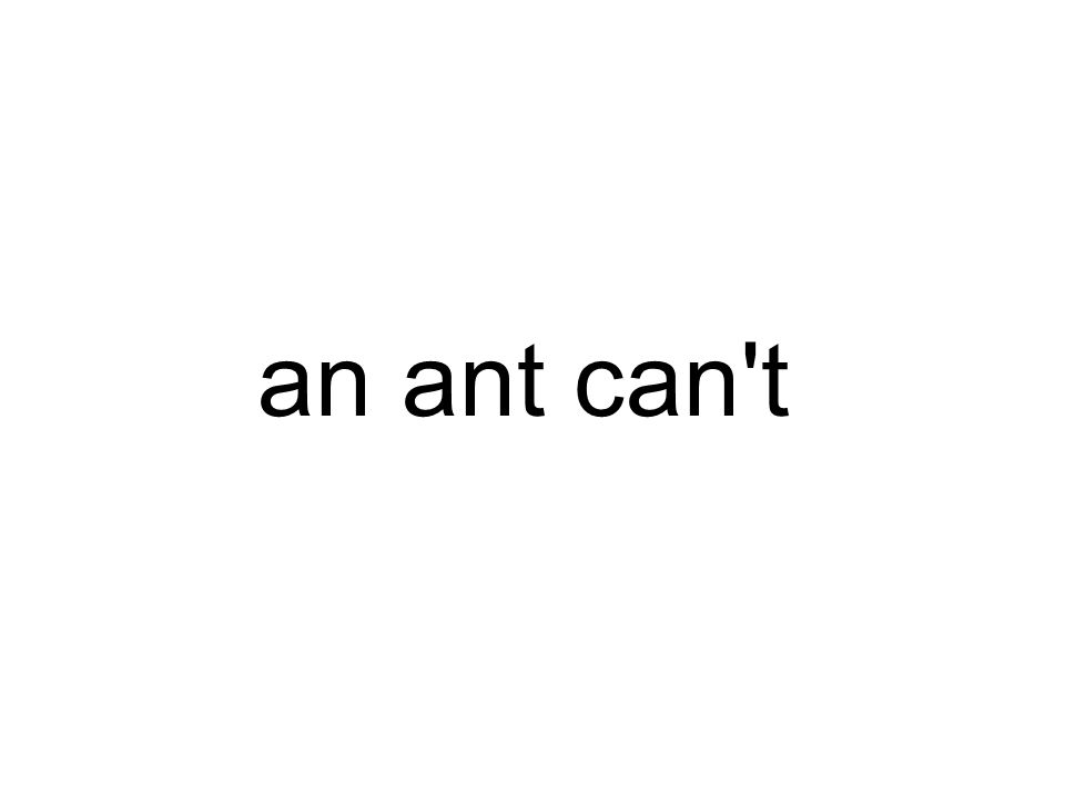 an ant can t