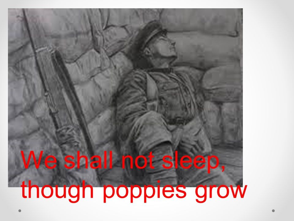 We shall not sleep, though poppies grow