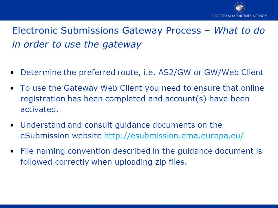 The Gateway What is the Gateway? Gateway Options - ppt video online
