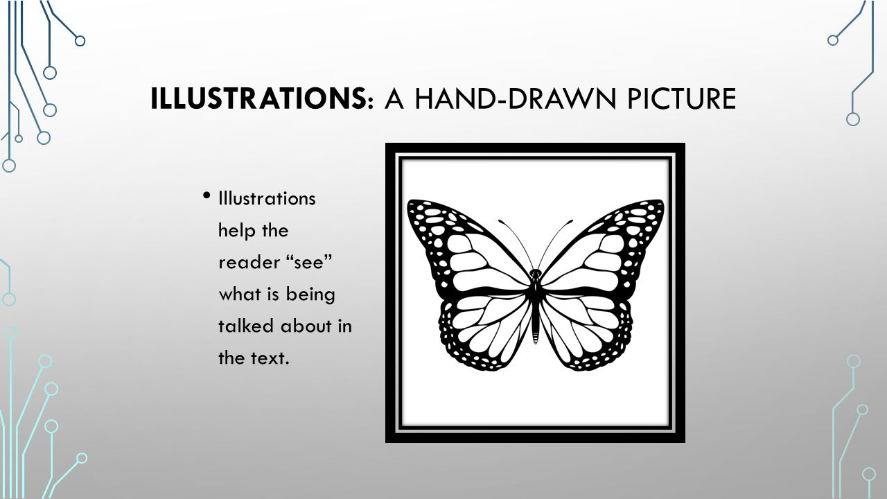 Illustrations: a hand-drawn picture