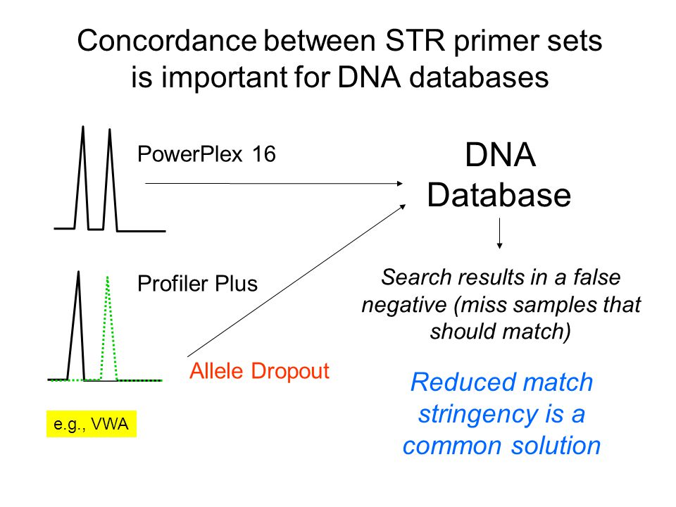 Fundamentals Of Forensic Dna Typing Ppt Download