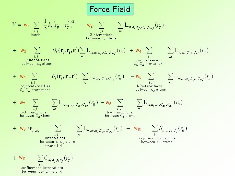 Force Field w1 w2 w3 w4 w5 w6 w7 w8 w9 w10 w11